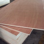 Bintangor plywood manufacturer in China