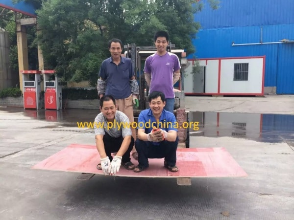 china plywood factory export to india